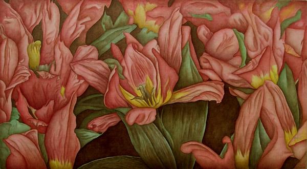 tulip-rhapsody